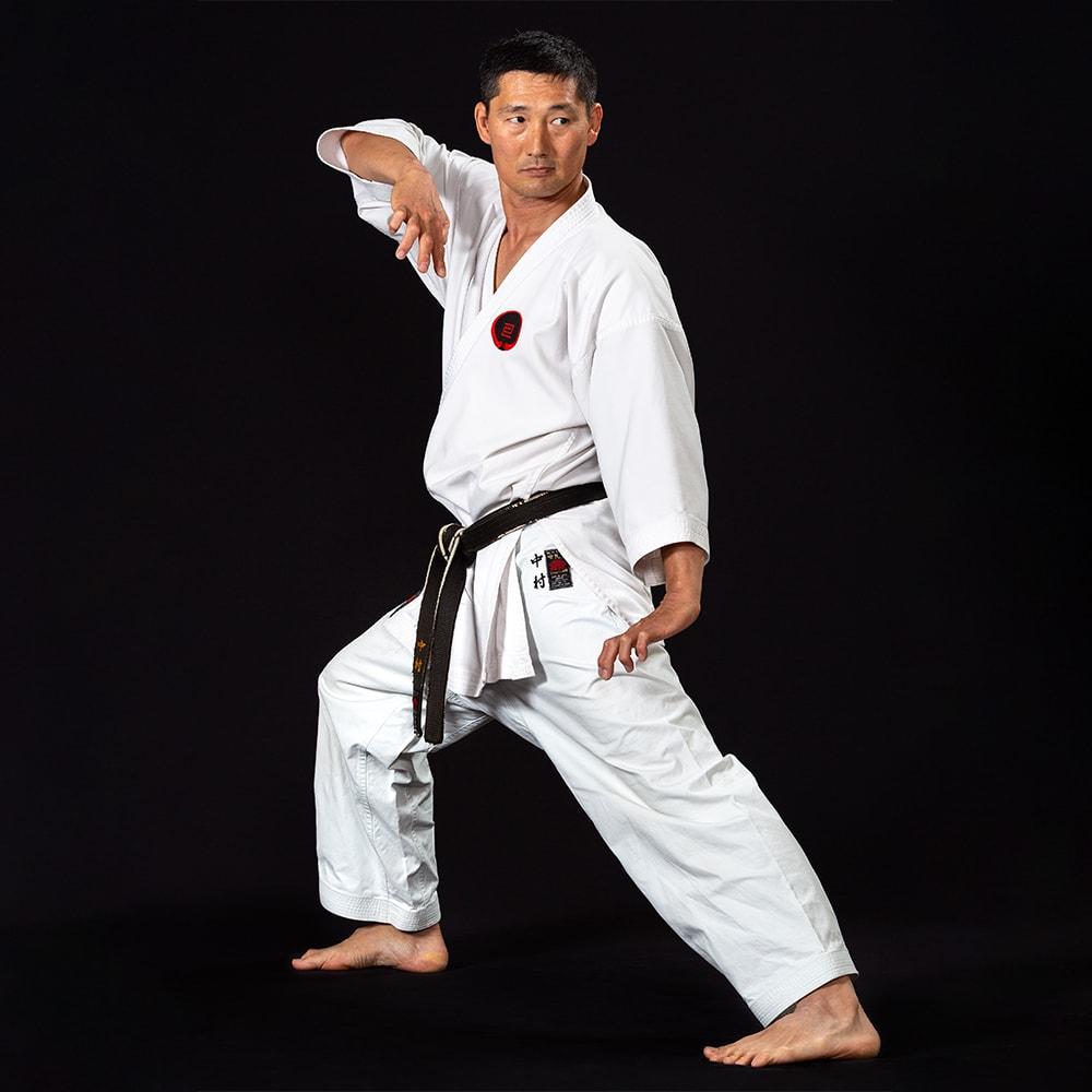 Nakamura Sensei Stance